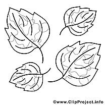 Coloriage feuilles automne image à télécharger