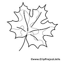 Dessin feuille – Coloriage automne à télécharger
