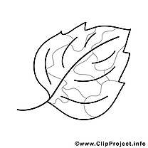 Feuille clipart – Automne dessins à colorier