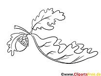 Gland dessin – Automne gratuits à imprimer