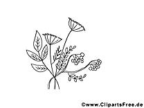 Herbes illustration – Automne à imprimer