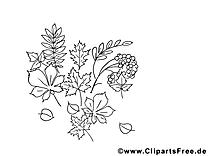 Herbes images – Automne gratuits à imprimer