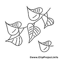 Image feuilles – Automne images à colorier