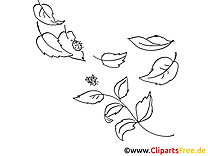 Insects illustration – Automne à colorier