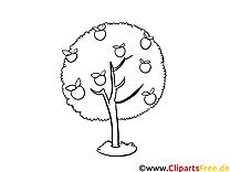 Pommier dessin – Coloriage automne à télécharger