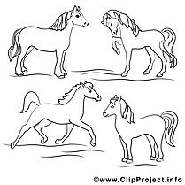 Chevaux dessin – Coloriage cheval à télécharger