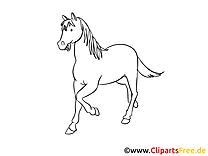 Coloriage cavale illustration à télécharger