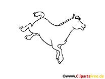 Saute illustration – Cheval à imprimer