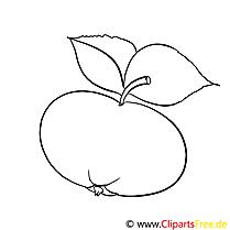 Pomme cliparts gratuis – Divers à imprimer