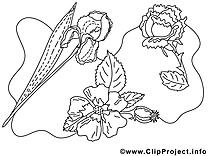 Floraison dessin gratuit à imprimer