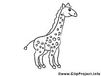 Girafe illustration à colorier clipart