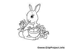 Lapin image à colorier images cliparts
