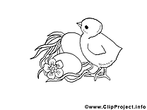 Poussin image à imprimer clipart