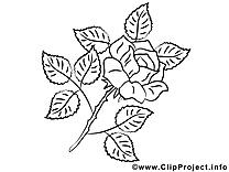 Rose coloriage clip art gratuit