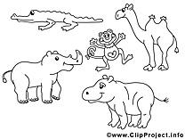 Zoo dessin à colorier image gratuite