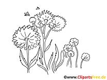 Fleurs clip arts – Été à imprimer