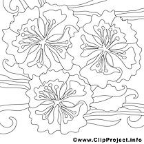 Fleurs images – Été gratuits à imprimer