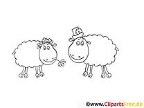 Brebis clipart – Campagne dessins à colorier