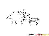 Cochon dessin à télécharger – Campagne à colorier