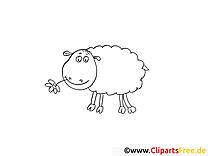 Mouton image gratuite – Campagne à colorier