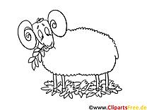 Mouton image gratuite – Campagne à imprimer