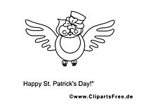 Hibou image gratuite – Saint-Patrick à colorier