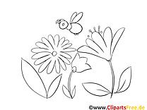 Abeille illustration – Coloriage fleurs cliparts