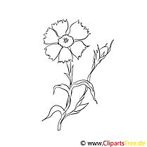 Clip art gratuit fleurs à colorier