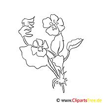 Coloriage illustration fleurs  à télécharger