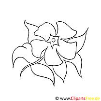 Dessin à télécharger fleurs à colorier