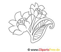 Dessin gratuit floraison – Fleurs à colorier