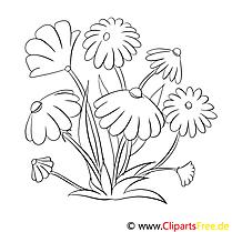 Fleurs clipart dessins à colorier