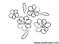 Floraison illustration – Fleurs à imprimer