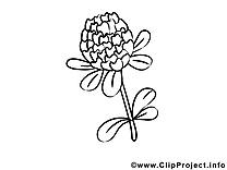 Illustration fleurs gratuit à imprimer