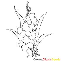 Iris illustration – Fleurs à imprimer