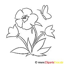 Papillon illustration – Fleurs à colorier