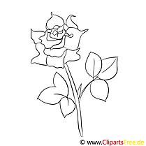 Rose images gratuites – Fleurs à colorier