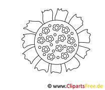 Tournesol image – Coloriage fleurs illustration