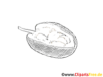 Coloriage fruits illustration image