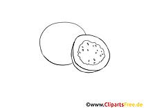 Coloriage illustration à télécharger fruits