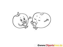 Dessin gratuit pommes – Fruits à colorier