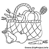 Panier dessin à télécharger – Fruits à colorier