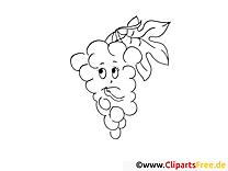 Raisin illustration – Fruits à imprimer