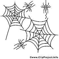 Coloriage toile halloween illustration à télécharger