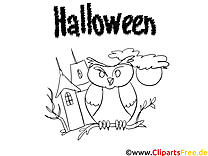 Hibou illustration – Halloween à colorier