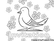 Pigeon image à télécharger – Invitations à colorier