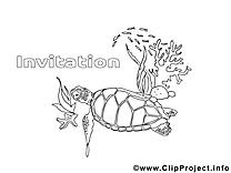 Tortue dessin à télécharger – Invitations à colorier