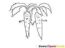 Carotte dessin gratuit – Légumes à colorier
