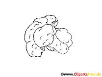 Chou-fleur clipart – Légumes dessins à colorier