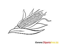 Maïs images gratuites – Légumes à colorier